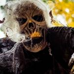 Week27_Halloween2014_482