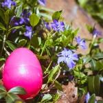 Week3_Easter 2014_8