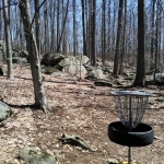 hole 8 view from basket